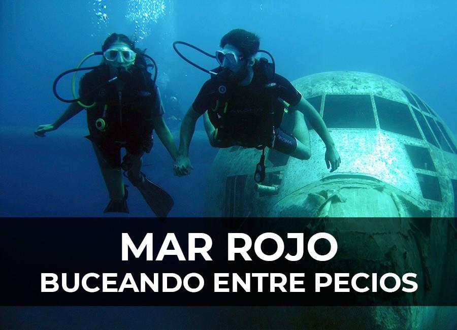 mar-rojo-buceo