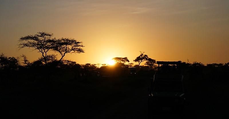 amanecer en el serengueti